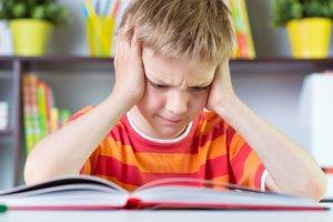 מרכז C.A.T | קשיי למידה – אוטיזם