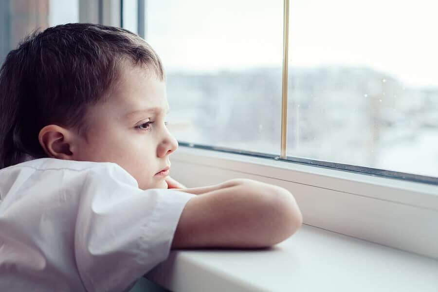 מרכז C.A.T | התבודדות – אוטיזם